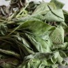 Mail Order Herbs