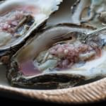 closeup raw oysters with tropical mignonette