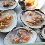 raw cherry stone clams in half shell