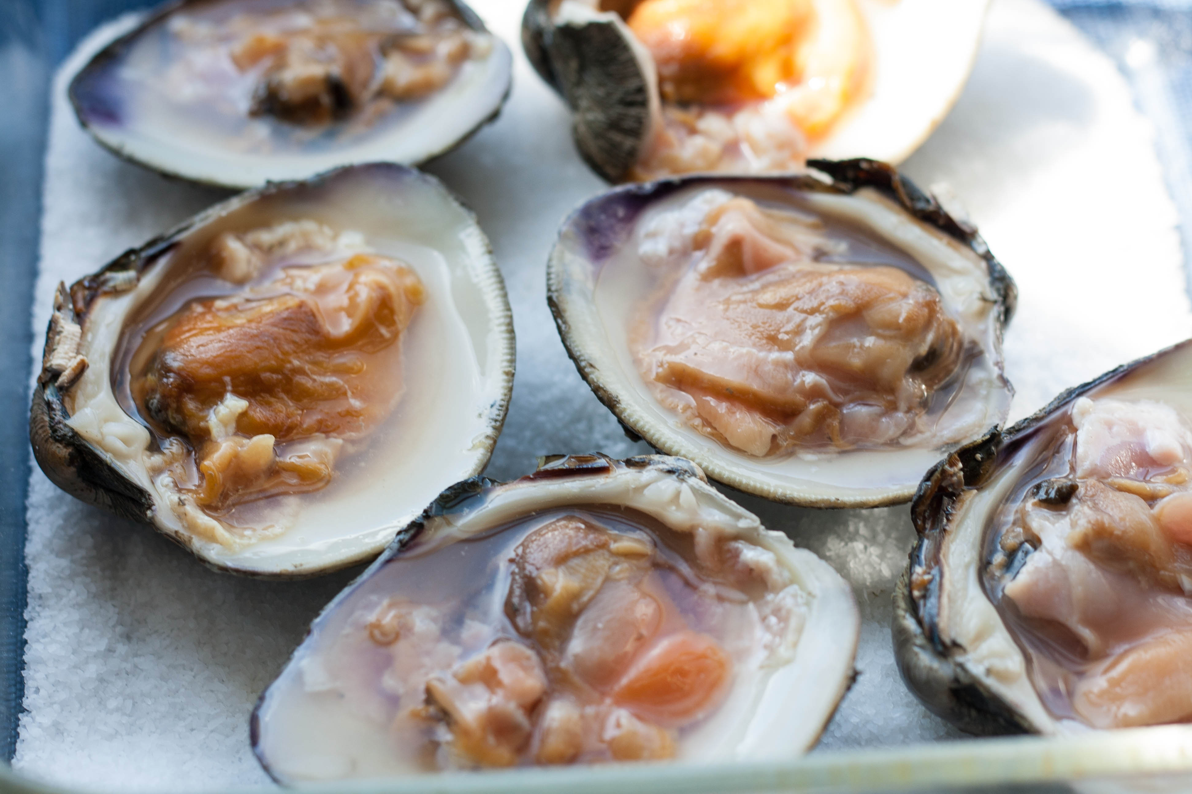 raw-cherry-stone-clams-in-half-shell | for food's sake | Pinterest