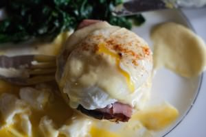 eggs benedict closeup