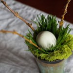 Copper cups, wheatgrass and green moss nest