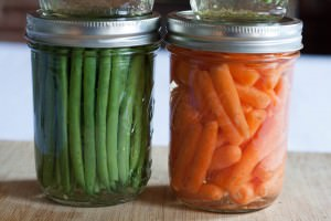 Spicy Mint and Dill Quick Pickled Beans and Carrots canned