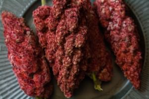 Sumac Lemonade sumace drupes